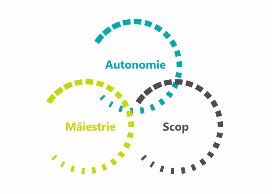 Motivare - Autonomie - Măiestrie - Scop